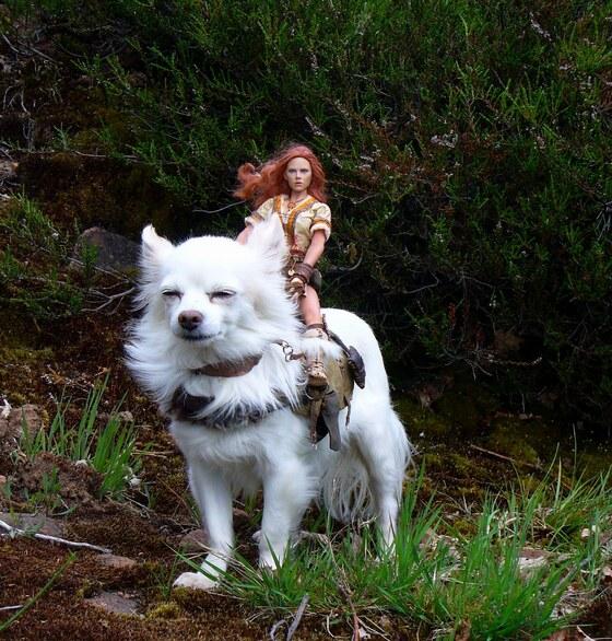 Druidin auf weißem Warg
